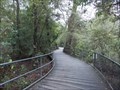 Image for Fitzroy Falls Boardwalk, Morton National Park, NSW