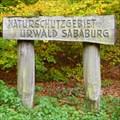 Image for Urwald Sababurg Naturschutzgebiet, Hessen Germany