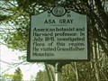 Image for ASA Gray