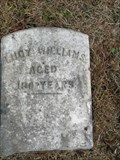 Image for 100 - Lucy Williams - Greenwood County, SC