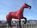 Image for Horse in a Hazmat Suit - Arvada, CO