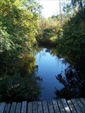 Image for Matthaei Botanical Garden Trails footpaths - Ann Arbor, MI