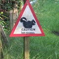 Image for Caution Red Squirrel - Monikie, Angus.