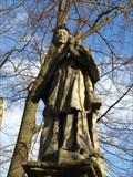Image for St. John of Nepomuk / Sv. Jan Nepomucký,  Klášterní Skalice, Czech republic