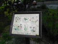 Image for Wynn Gardens Butterfly Garden - Old Colwyn, Wales, UK