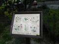 Image for Wynn Gardens Butterfly Garden - Old Colwyn, Wales, UK