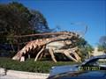 Image for Ginormous Shrimp - Islamorada, FL USA