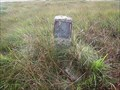 Image for North Peat Pass Marker, Walkham Head, Dartmoor.