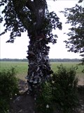 Image for Fort Erie Shoe Tree