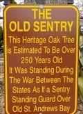 Image for The Old Sentry - St Andrew, Florida