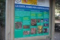 Image for Fauna and Flora of Cala Mitjana, Menorca