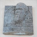 Image for Relief Wilhelm Steinitz - Praha, Široká, Czechia