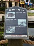 Image for Turtle Pond - Jacksonville, FL