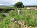 Image for O.S. Triangulation Pillar - Wester Balgedie, Perth & Kinross.