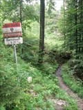 Image for Tyrol/Austria - Bavaria/Germany, on a hikingtrail close to the river Tiroler Achen