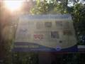 Image for Herptiles - Boundary Creek Natural Resource Area - Moorestown, NJ