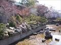Image for Anna Scripps Conservatory Japanese Garden - Belle Isle - Detroit, Michigan