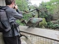 Image for African Aviary - San Francisco, CA
