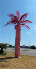 Image for Baby Alcapulco Electric Palm Tree - Austin, TX