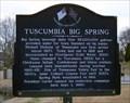 Image for Tuscumbia Big Spring - Tuscumbia, AL