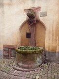 "Image for Draw Well #4 : ""Well of the Jews"", Riquewihr, Haut-Rhin/FR"