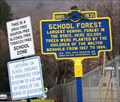 Image for School Forest - Walton, NY