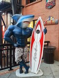 Image for Sharky - Monterey, CA