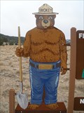 Image for Smokey Bear - Geiger Summit, NV