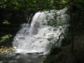 Image for Waterfalls - Lower Falls of Decew Falls