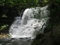Image for Waterfalls - Lower Falls of Decew Falls