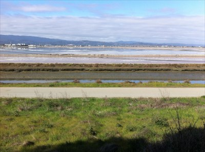 Salt Ponds, Looking North from Bedwell Bayfront Park-1, San Mateo Cnty, CA