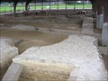 Image for The Forum Baths of Aventicum