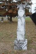 Image for L.M. Peden - Nelson Cemetery - Azle, TX