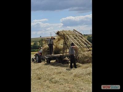 Fermier au travail avec la chargeur à foin. no-2  Farmer at work with the hay loader. No-2
