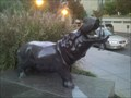 Image for GWU's River Horse--Unofficial Mascot