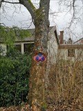 Image for Tree eating traffic-sign - Waldbröl - Germany - Northrhine / Westphalia