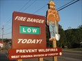 Image for Jefferson National Forest Smokey Bear - Princeton, WV