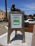 Image for Sea Lion - Capitola, CA