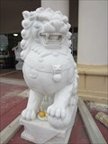 Image for Hiep Thai Lions -- Garland TX