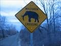 Image for Mastodon Crossing - Rochester, MI