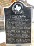 Image for Confederate Texas Poet Mollie E. Moore