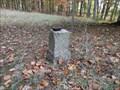 Image for Trigonometrischer Punkt nahe dem Fuchsturm/ Saalfeld/ Thüringen/ Deutschland