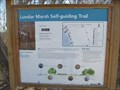 Image for Lundar Marsh Self-guiding Trail