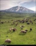 Image for Mount Tendürek / Tendürek Dagi (Agri province, Turkey)