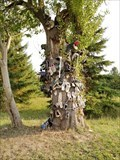 Image for Warner Road Shoe Tree - St Catharines, ON