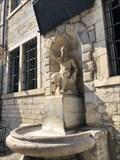 Image for Immeuble et Fontaine des Carmes attenante - Besançon, Franche-Comté, France