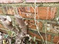 Image for Cut Benchmark - Hackenden Lane, East Grinstead, West Sussex
