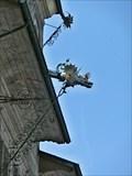 Image for Gargoyles - Lausanne, Switzerland