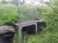 Image for Blanding's Turtle Tunnel CV4 - Kanata, Ontario