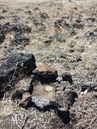 I put a circle of lava rock around disk